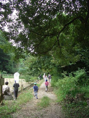 野辺の小径の写真